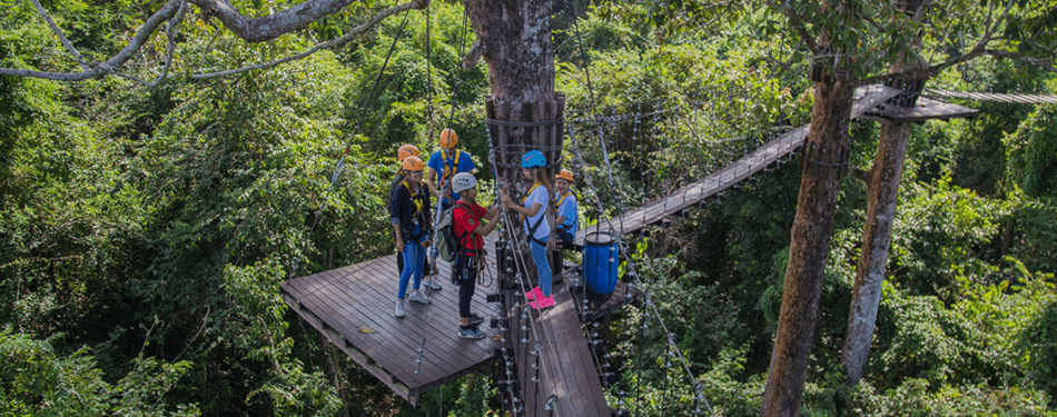 Angkor Zipline Gold Eco- Adventure Canopy Tour & Angkor Zipline Gold Eco- Adventure Canopy Tour   BookMeBus