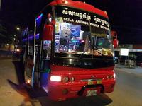 Medium night bus